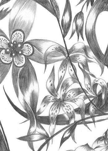 Wilderness, Textiles, Studio Tord Boontje