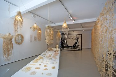 Installations: The Lacemaker